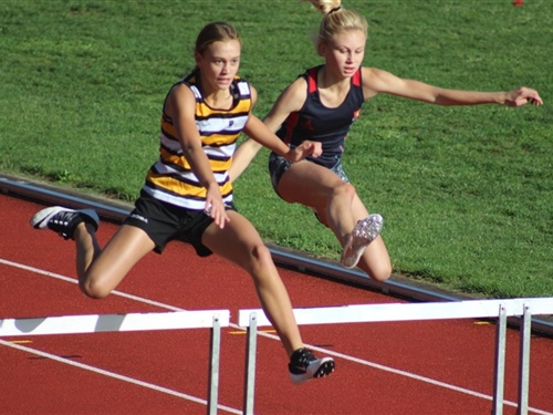 Athletes on form at central zone champs